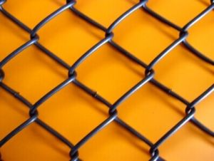 Beautiful Chainlink Wire Mesh Fence pictures & photos