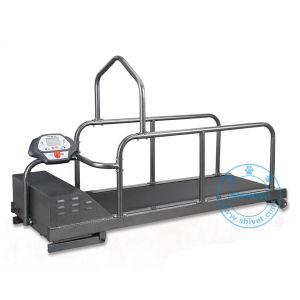 Pet Treadmill (TM-180) pictures & photos
