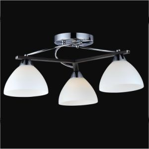 Chanadelier Ceiling Lamps pictures & photos