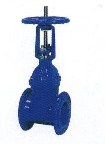 Rising Stem Flexible Seat Gate Valve (RRHX) pictures & photos