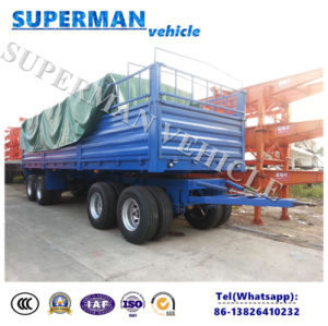 4 Axle Utility Transport Pulling Dolly Cargo Full Trailer pictures & photos