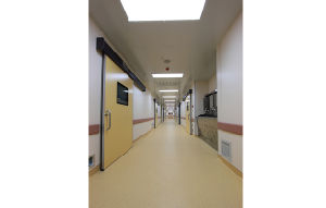 Aluminum Structure Hospital Wall Guard pictures & photos