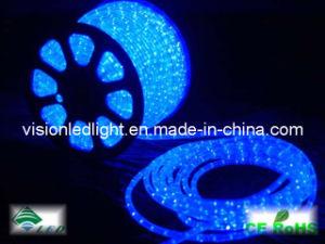 LED Rope Flex Light (VS-2D-B)
