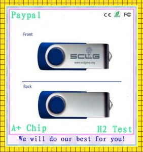Hot Selling 4GB Swivel Plstic USB Stick (GC-S630) pictures & photos