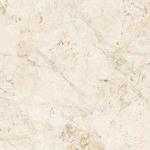 Glazed Polished Porcelain Wall and Floor Tile (SG63601P1)