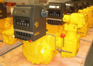Positive Displacement Flow Meter pictures & photos