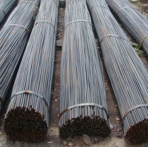 HRB335 Deformed Rebar pictures & photos