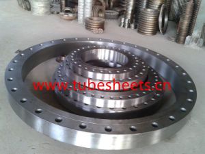 Big Size High Pressure Carbon Steel Flanges pictures & photos