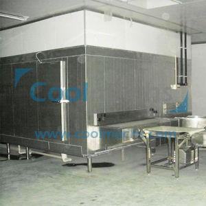 IQF Tunnel Quick Freezing Equipment for Fish Shrimp Dumplings pictures & photos