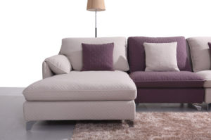 New Arrival Modern Simple Fabric Sofa Set (HC570) pictures & photos