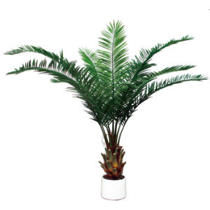 Artificial Date Palm Tree with Plastic Pot pictures & photos