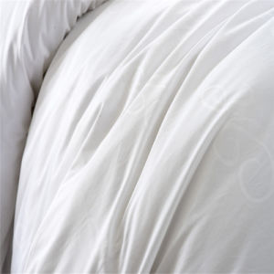 Customized Discount Brush Cotton Down Bedding for Hotel Apartment pictures & photos