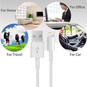 Lightning Data Sync Charging Cable for iPhone pictures & photos