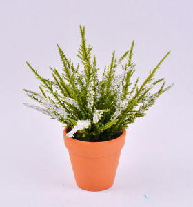 Colorful Pine Needle Foam Flower with Pots pictures & photos