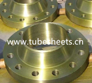 Carbon Steel Flange and Stainless Steel Flange and Alloy Steel Pipe Fitting Forged Flange pictures & photos