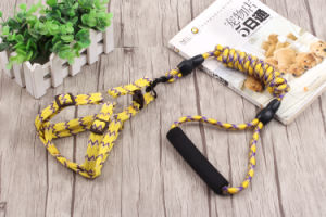 Pet Products Dog Comfort Lead (L102) pictures & photos