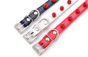 China Cheap PU Leather Spike Home Dog Collars and Leashes pictures & photos