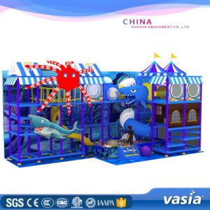 2017 Children Indoor Playground with Soft Game Center pictures & photos