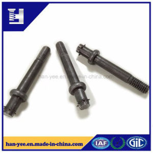 OEM Wholesale Bolt with Partial Thread pictures & photos