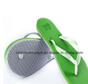 Fasionable Flip Flops Shoes, Women Shoes pictures & photos