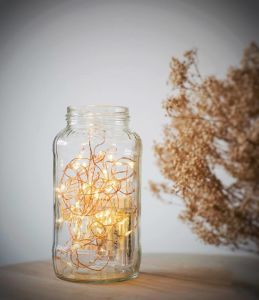 Warm White Fairy 2AA Battery Operated 40 LED String Lights 16.4FT Copper Wire Firefly Lights pictures & photos