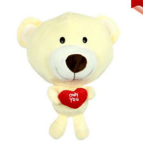 CD Box CD Package CD Package to Map Custom Teddy Yellow Bear Doll Cartoon Car CD Car CD Bag pictures & photos