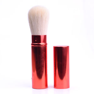 Fashion Popular Premium with Synthetic Hair Aluminium Tube Reasonable Price Customized Professional Retractable Powder/Blush/Face/Eyebrow Cosmetics Makeup Brush pictures & photos