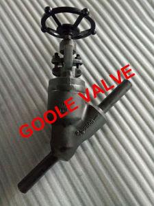 900lb/1500lb/2500lb Pressure Seal Y Pattern Globe Valve (GAJ65H) pictures & photos