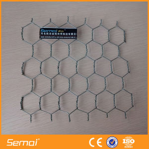 Hot Dipped Galvanized Hexagonal Wire Mesh for Poultry pictures & photos