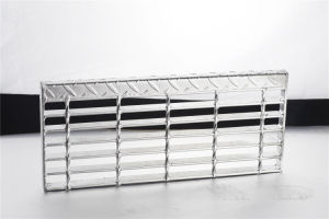 Hot DIP Galvanized Steel Ladder with Ce Approval pictures & photos