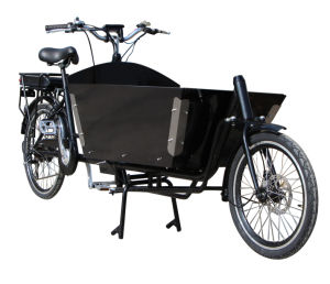 2 Wheels Bicycle with Motor Battery pictures & photos