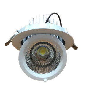 Embedded Orientable COB LED Downlight with 30W pictures & photos