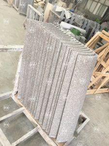 Overseas Service After Sales Stone Machine/Four Cylinder Column Slab Arc Slab Gantry Stone Cut &Cutting Machine pictures & photos