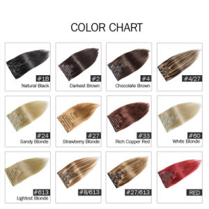 DIY 7PCS/Set 8PCS/Set 9PCS/Set 120g Free Shipping Blonde Human Hair Extensions pictures & photos