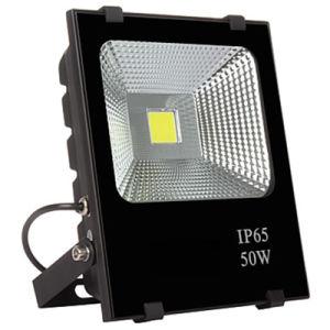 LED Flood Light 100W AC220V 110V Waterproof COB Chip pictures & photos