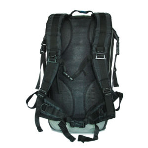 Outdoor Leisure Waterproof Travel Backpack pictures & photos