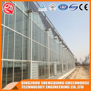 China Agriculture Glass Greenhouse for Vegetables/Garden pictures & photos