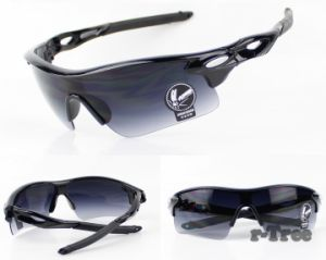 Sunglass UV400 Travel Coating Sunglasses Goggles pictures & photos