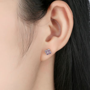 Fashion Stud 925 Silver Jewel Earring for Women pictures & photos