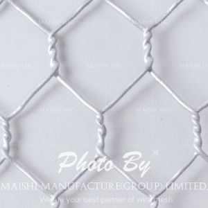 "Hexagonal Chicken Wire 1-1/4"" for Roost Mesh pictures & photos"
