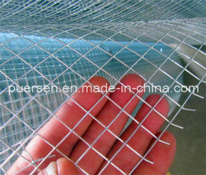 Galvanized Wire Mesh pictures & photos