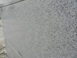 Suizhou White Granite China White Granite Slab for Tiles/Countertops/Paving pictures & photos