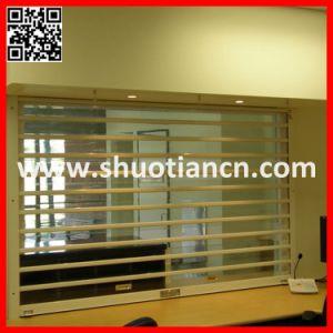 Elegant Control Remote Transparent Door (st-003) pictures & photos