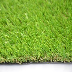 as Economic Landscping Artificial Grass pictures & photos