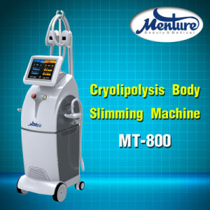 Body Slimming 4 Handpiece Cryolipolysis Weight Loss Medical Equipment