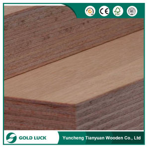 Gold Luck 18mm Marine Board Plwood for Boat pictures & photos