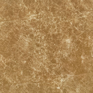Spain Dark Brown Color Web 800X800mm Marble Tile pictures & photos