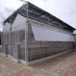 The Cheapest PC Agricultural Multispan Greenhouse pictures & photos
