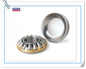 Thrust Spherical Roller Bearing, SKF, Roller Bearing