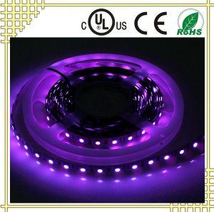 12VDC Ultra-Violet LED Strip pictures & photos